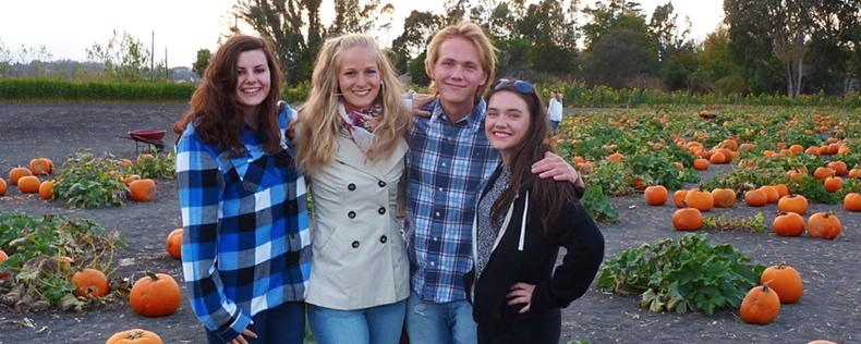 Studieophold for danske studerende i USA, DIS i Danmark